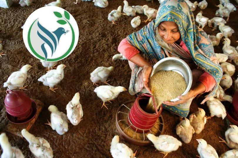 SDG 02 – Zero Hunger